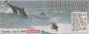 sun-surfin